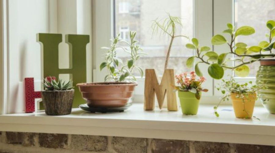6 Ways of Making Your Home Green