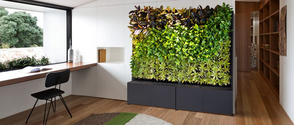 vertical garden in living room